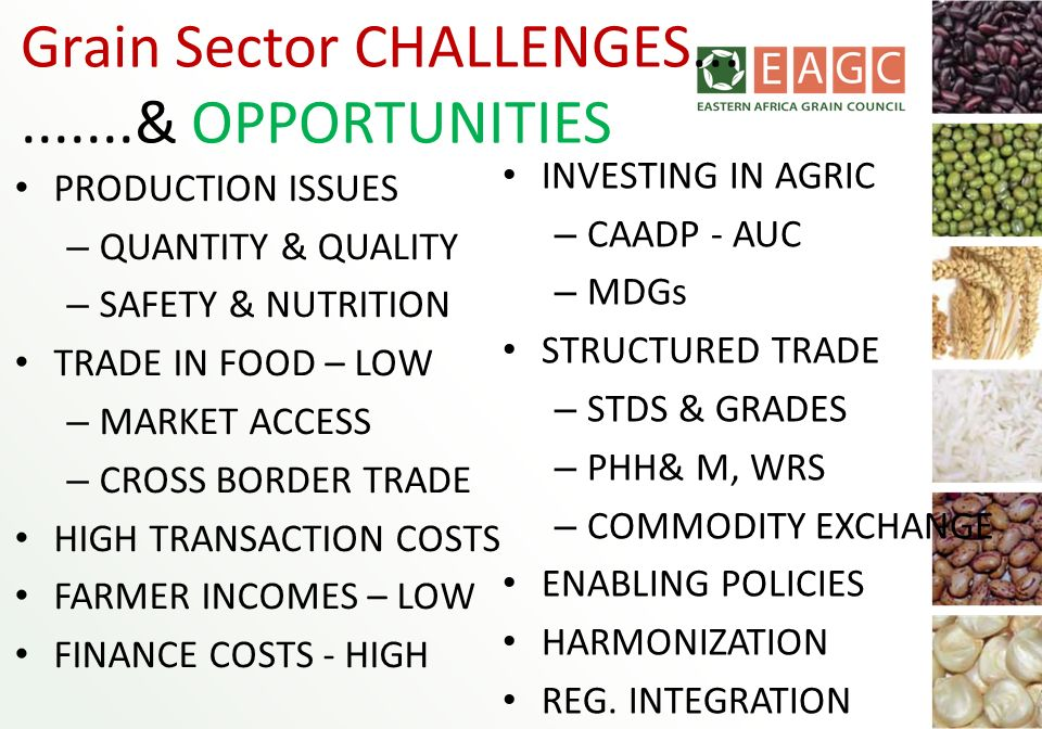 Grain Sector CHALLENGES... .......& OPPORTUNITIES