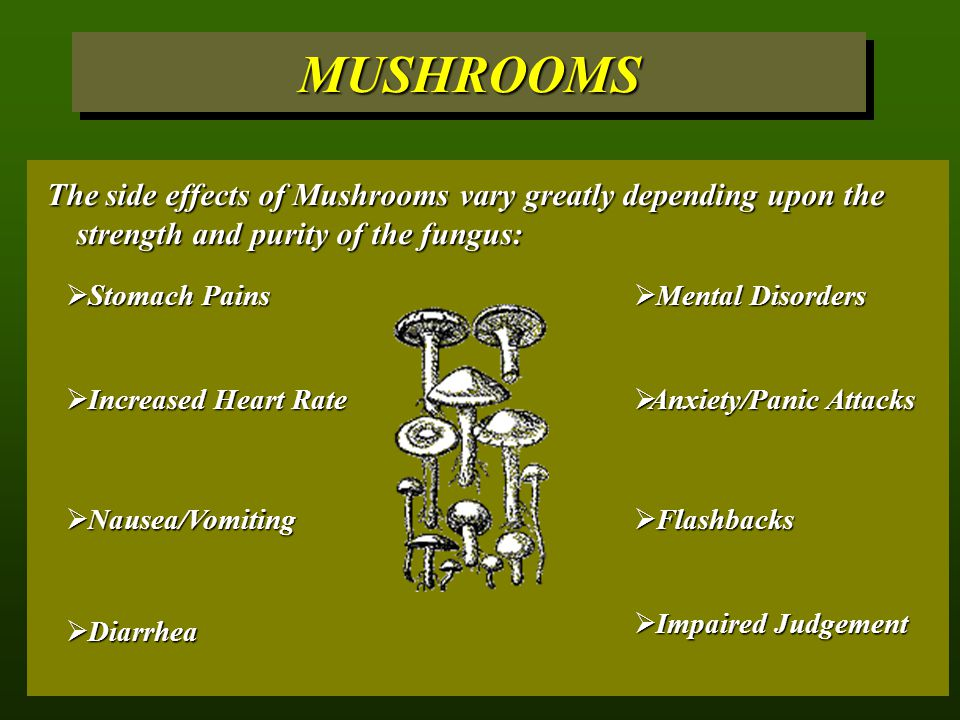 MUSHROOMS The side effects of Mushrooms vary greatly depending upon the strength and purity of the fungus: