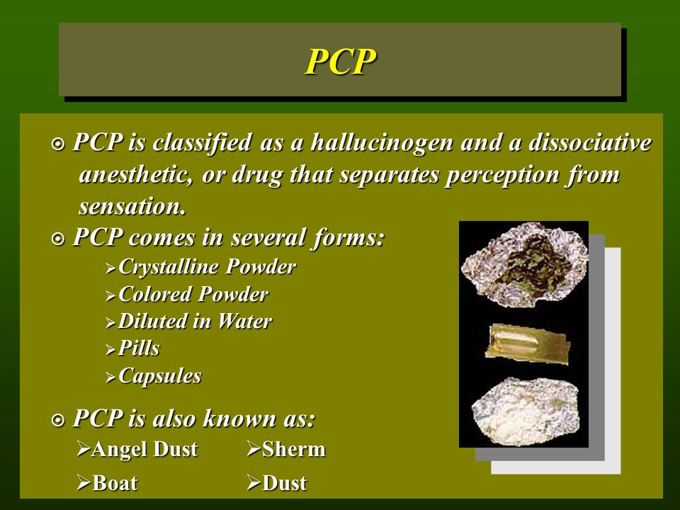 PCP PCP is classified as a hallucinogen and a dissociative anesthetic, or drug that separates perception from sensation.