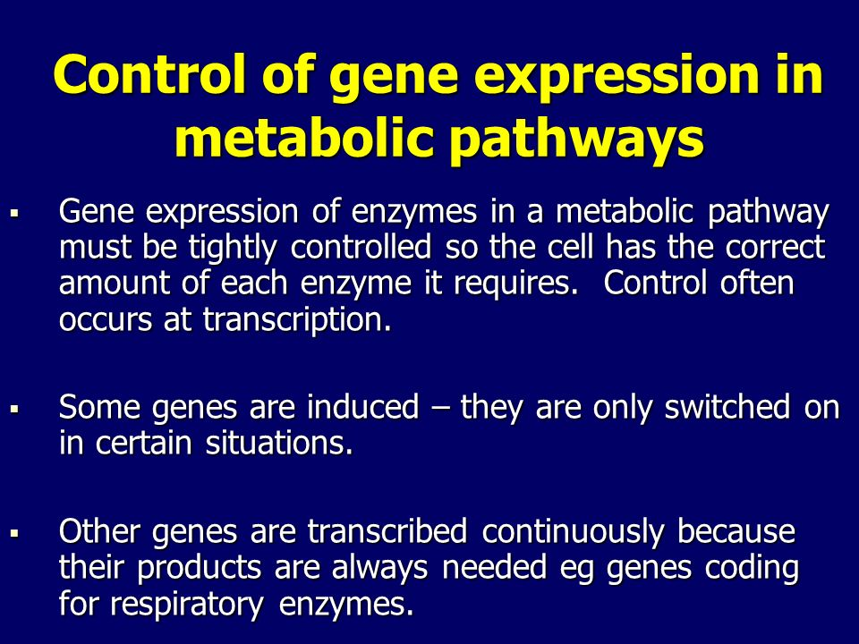 Control of gene expression in metabolic pathways
