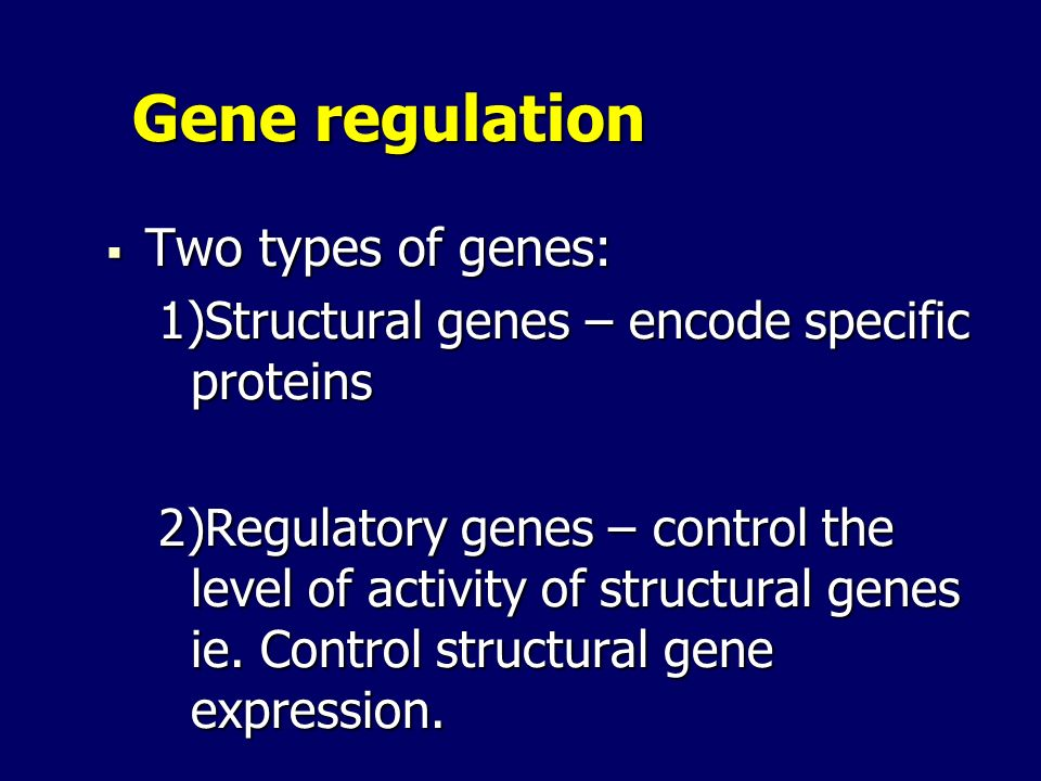 Gene regulation Two types of genes: