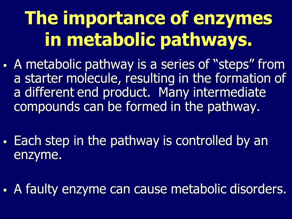 The importance of enzymes in metabolic pathways.