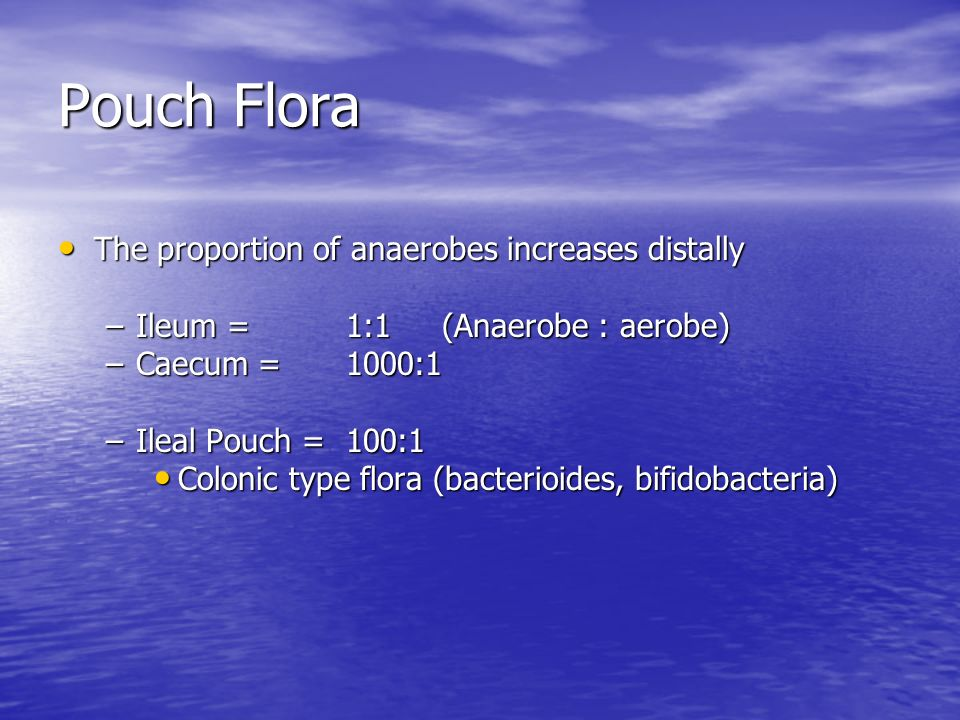 Pouch Flora The proportion of anaerobes increases distally