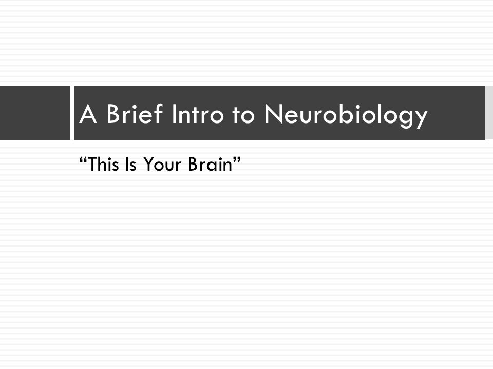 A Brief Intro to Neurobiology