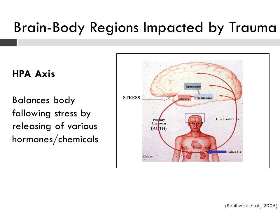 Brain-Body Regions Impacted by Trauma
