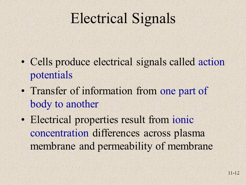 Electrical Signals Cells produce electrical signals called action potentials. Transfer of information from one part of body to another.