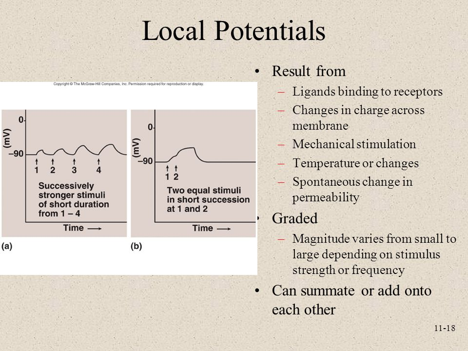 Local Potentials Result from Graded Can summate or add onto each other