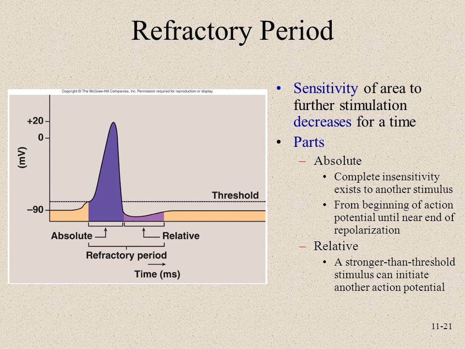 Refractory Period Sensitivity of area to further stimulation decreases for a time. Parts. Absolute.