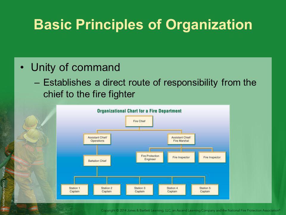 Basic Principles of Organization