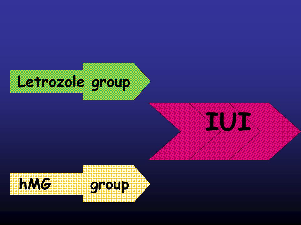 Letrozole group IUI hMG group