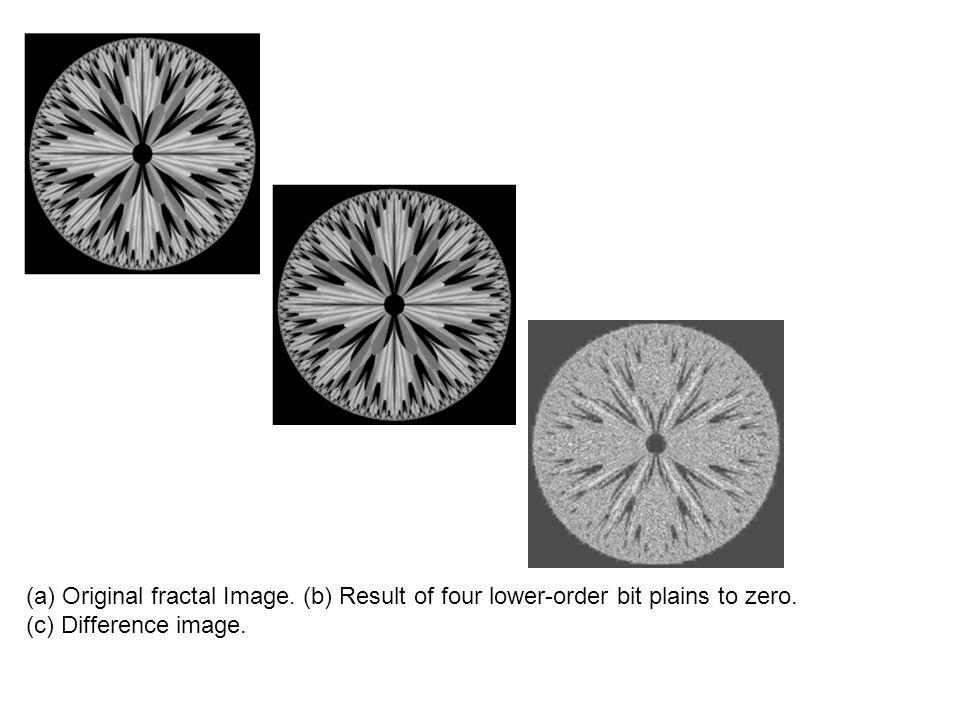 (a) Original fractal Image
