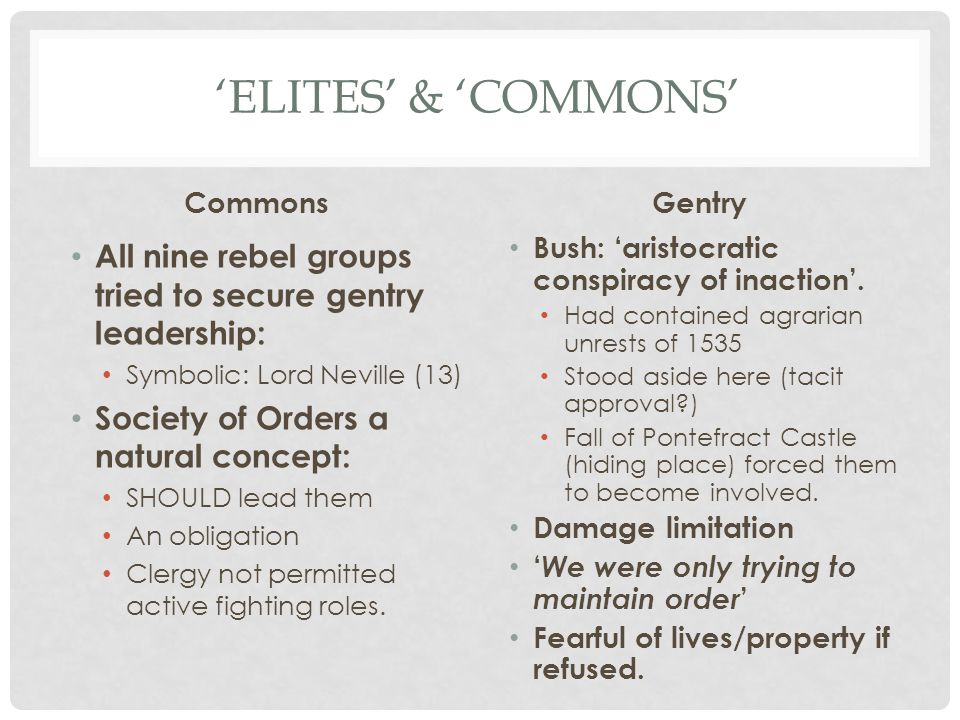 'Elites' & 'Commons' Commons. Gentry. All nine rebel groups tried to secure gentry leadership: Symbolic: Lord Neville (13)