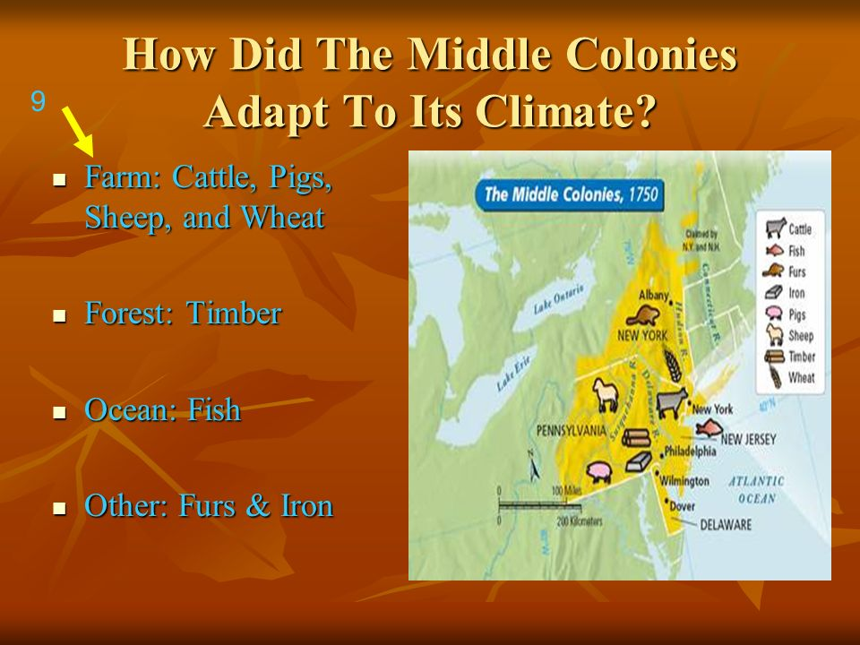 How Did The Middle Colonies Adapt To Its Climate