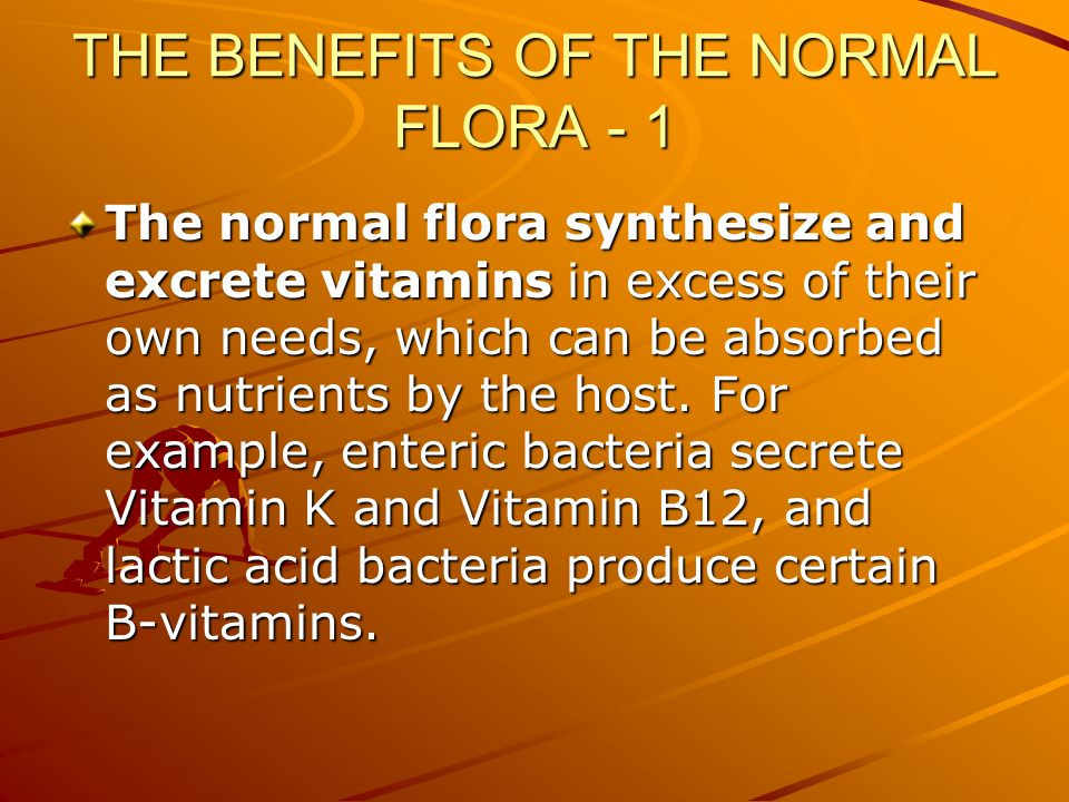 THE BENEFITS OF THE NORMAL FLORA - 1