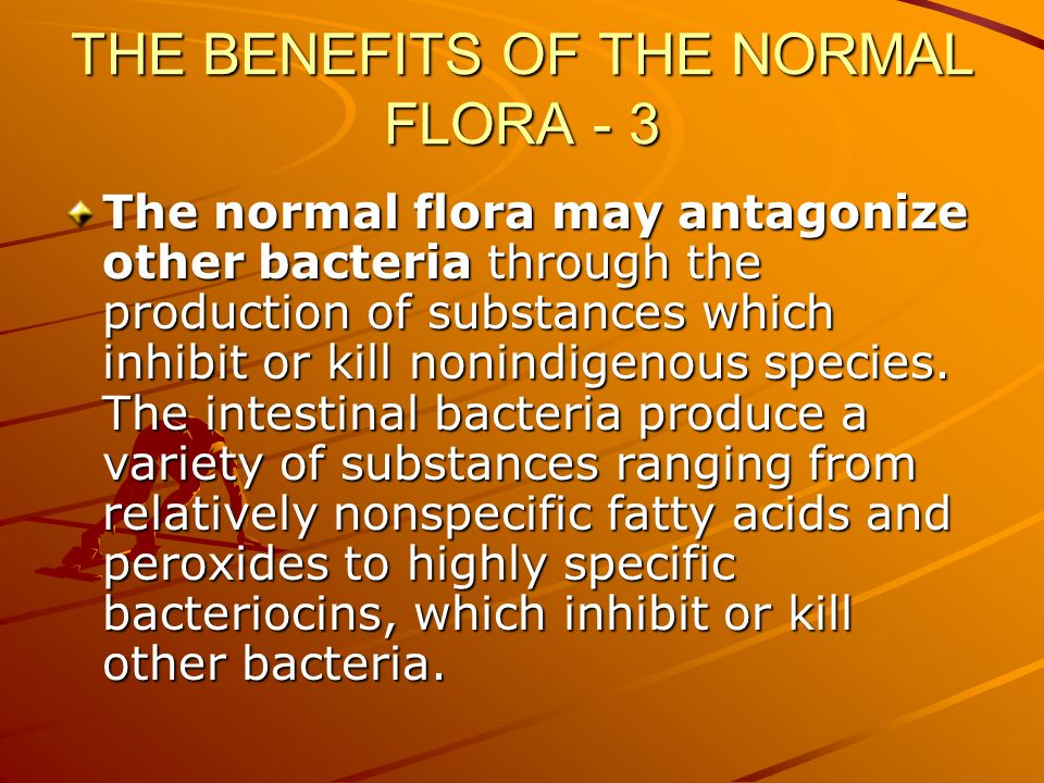 THE BENEFITS OF THE NORMAL FLORA - 3