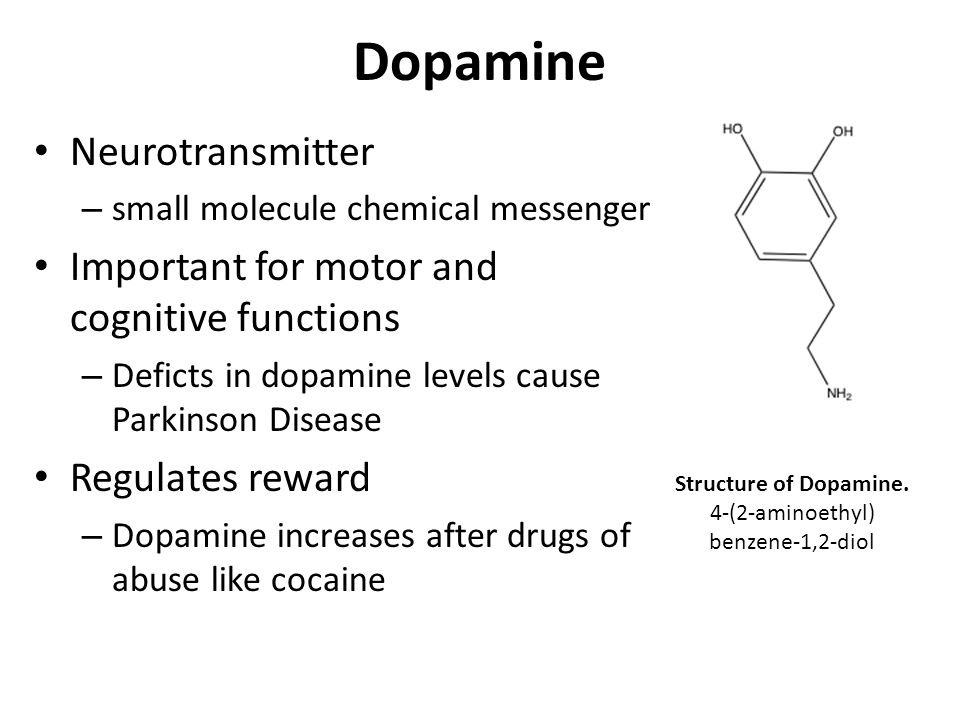 Dopamine Neurotransmitter Important for motor and cognitive functions
