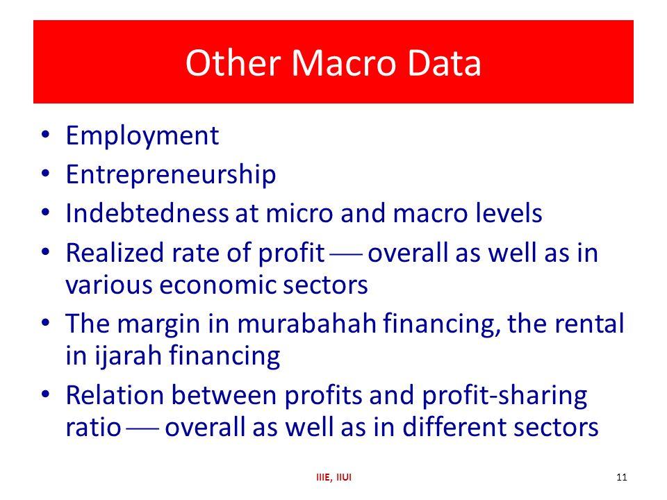 Other Macro Data Employment Entrepreneurship