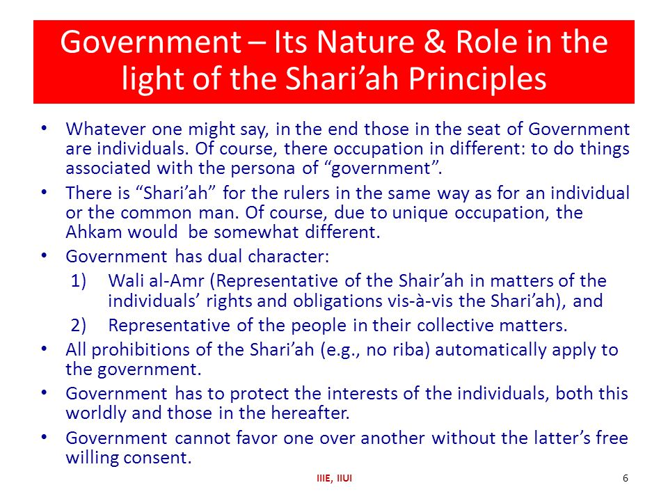 Government – Its Nature & Role in the light of the Shari'ah Principles