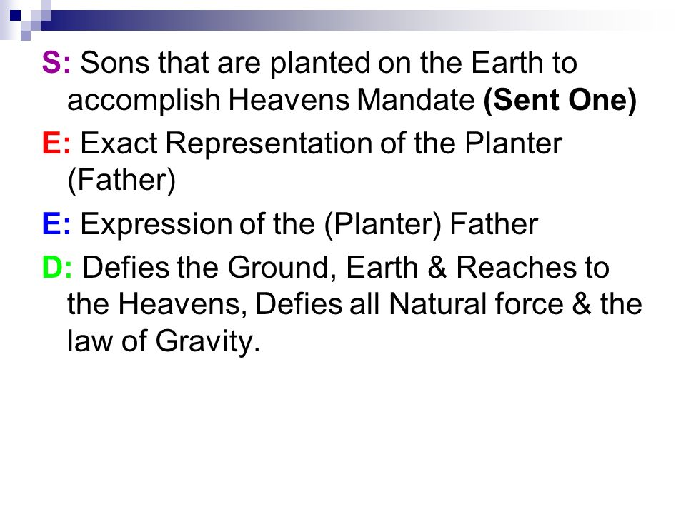 S: Sons that are planted on the Earth to accomplish Heavens Mandate (Sent One)