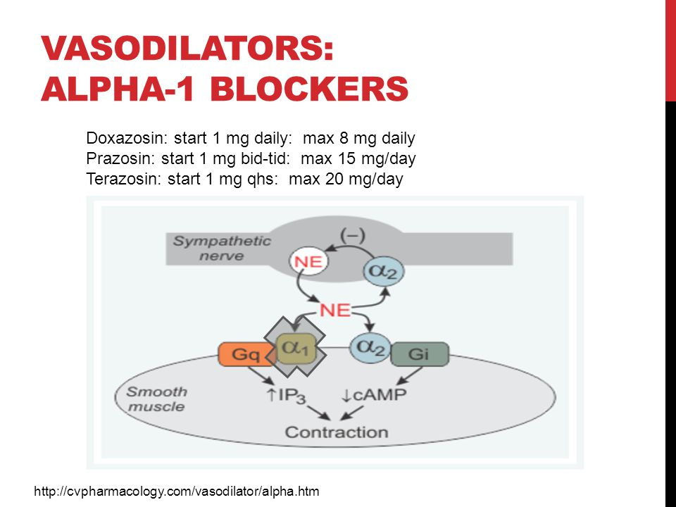 Vasodilators: alpha-1 blockers