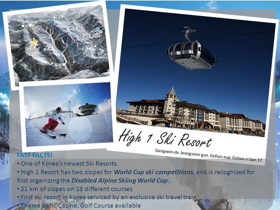 High 1 Ski Resort FAST FACTS! One of Korea's newest Ski Resorts
