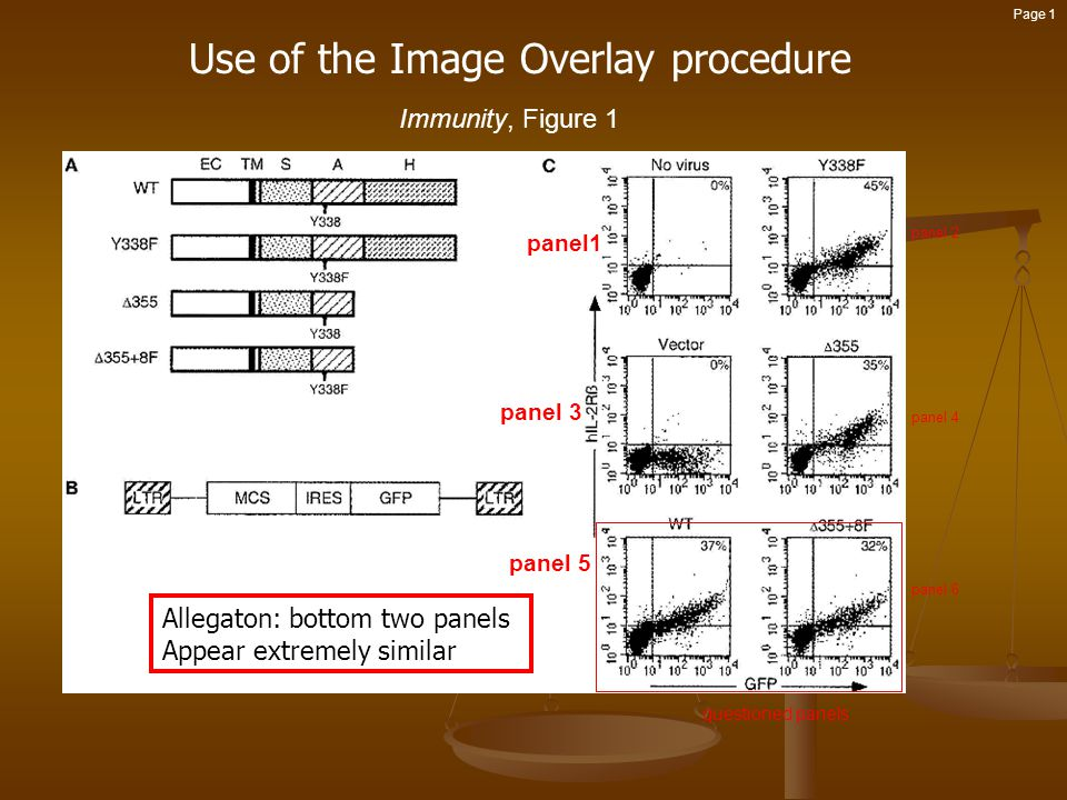 Use of the Image Overlay procedure