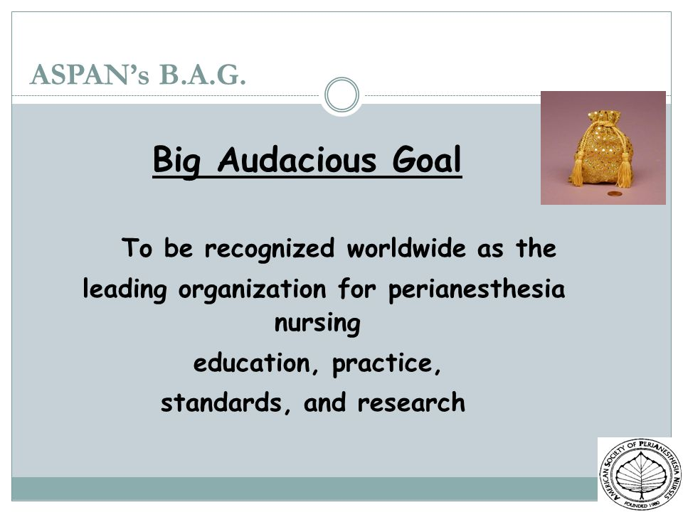 Big Audacious Goal ASPAN's B.A.G. To be recognized worldwide as the