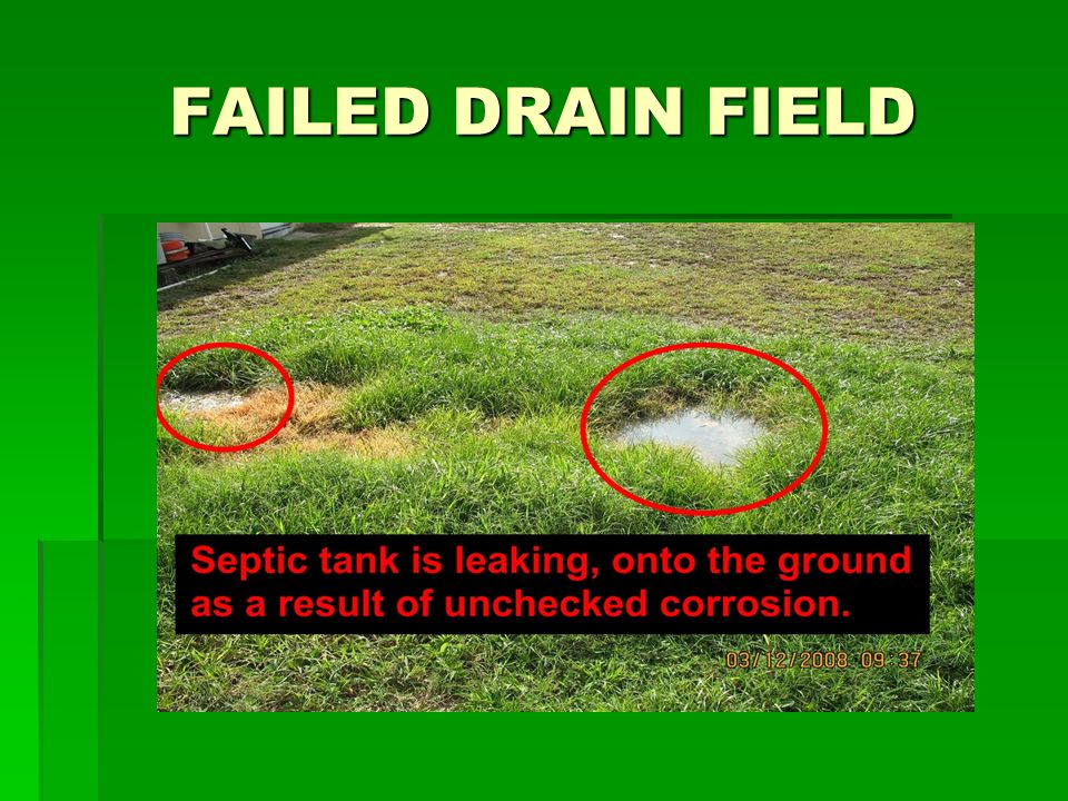 FAILED DRAIN FIELD