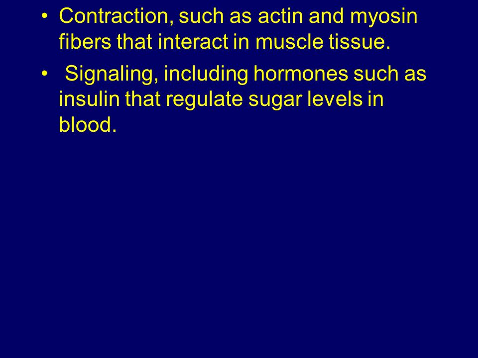 Contraction, such as actin and myosin fibers that interact in muscle tissue.