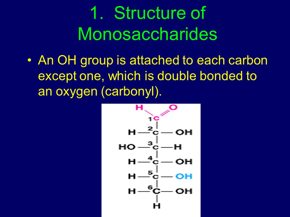 1. Structure of Monosaccharides