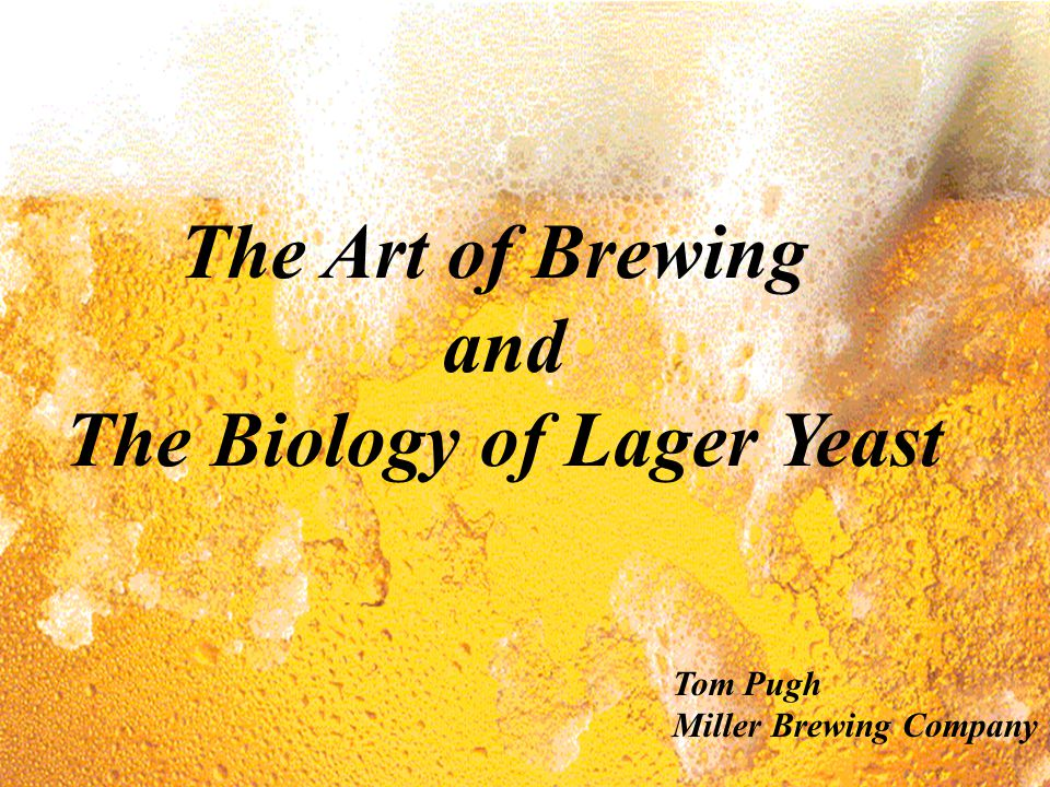 The Biology of Lager Yeast
