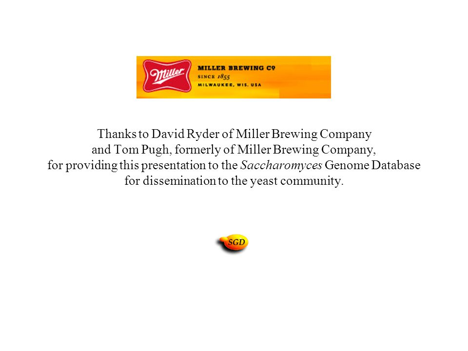 Thanks to David Ryder of Miller Brewing Company and Tom Pugh, formerly of Miller Brewing Company, for providing this presentation to the Saccharomyces Genome Database for dissemination to the yeast community.