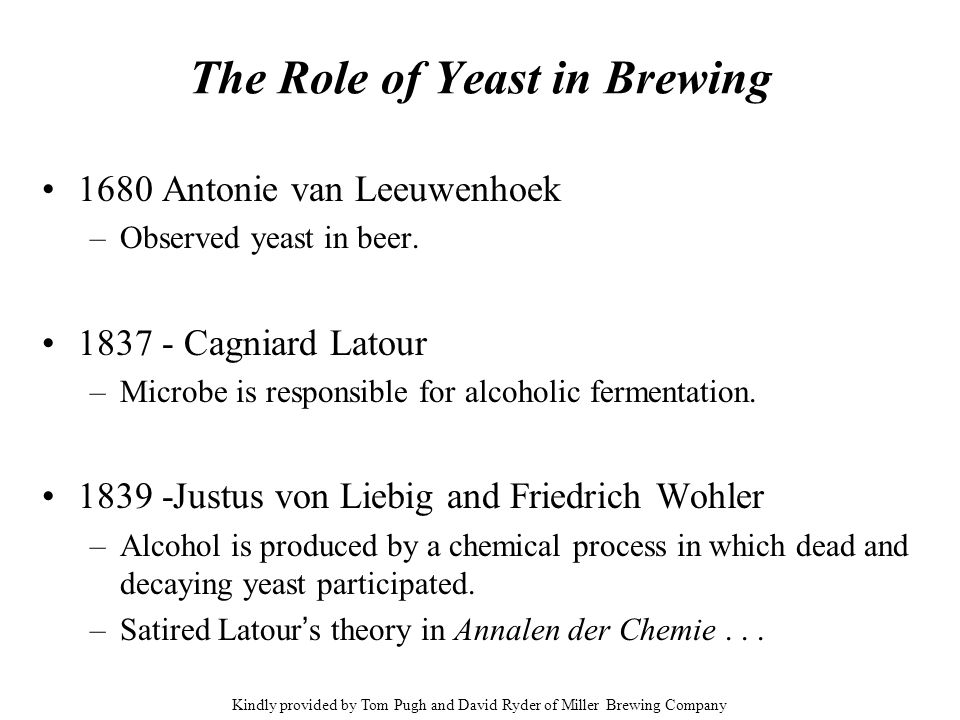 The Role of Yeast in Brewing