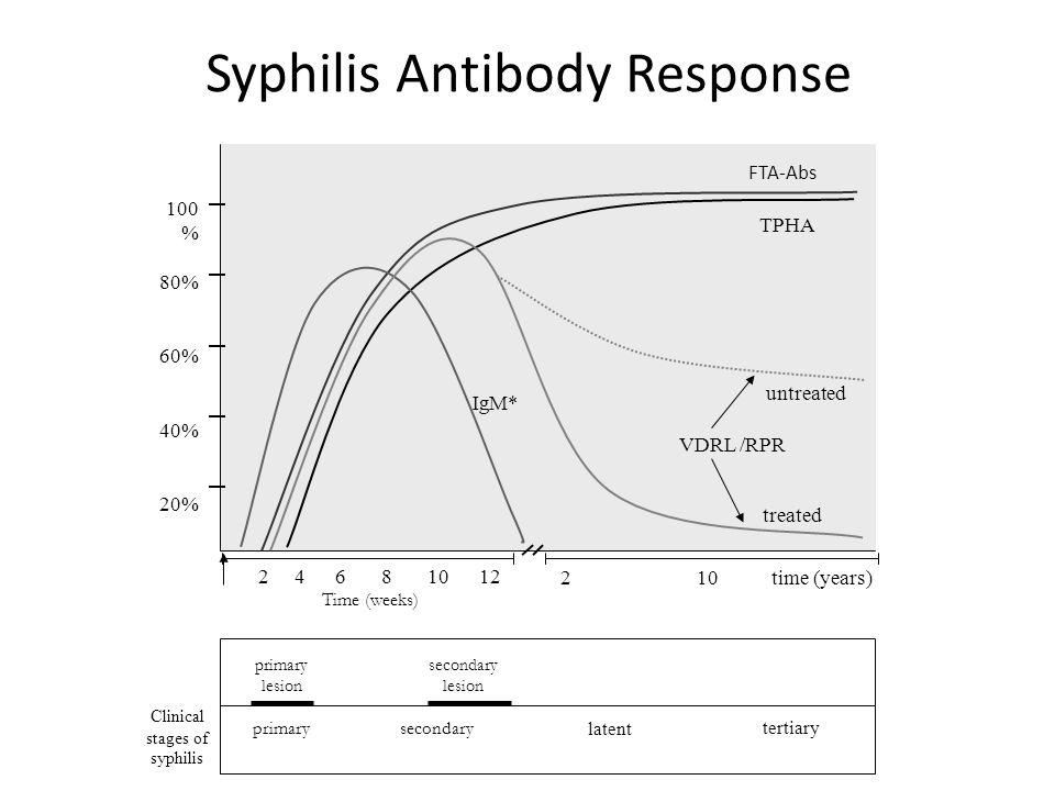 Syphilis Antibody Response