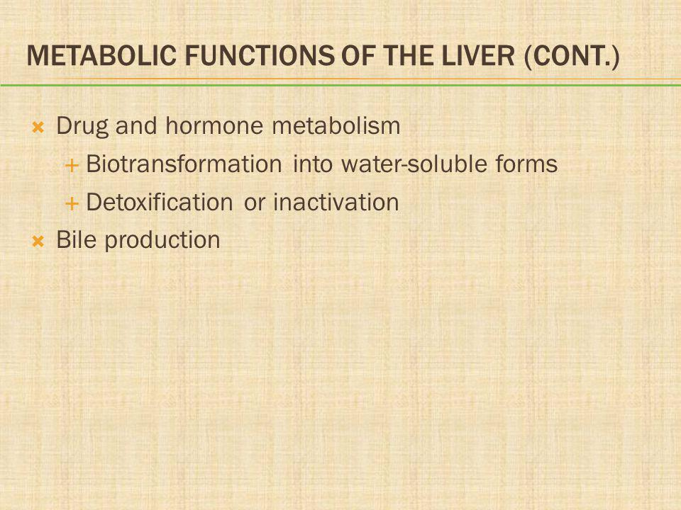 Metabolic Functions of the Liver (cont.)