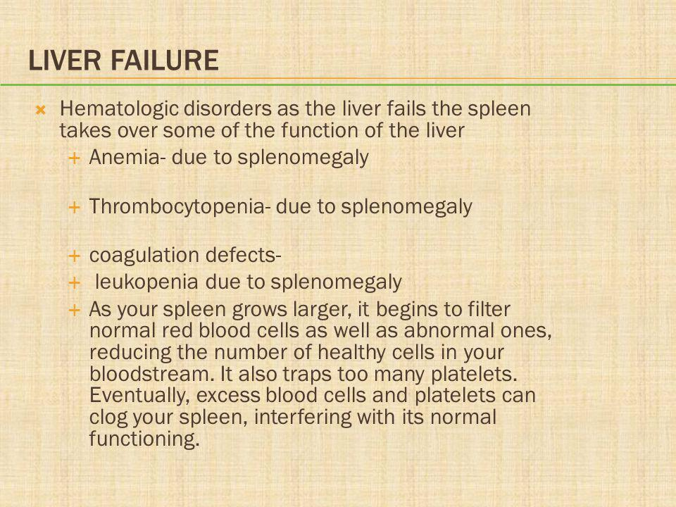 Liver Failure Hematologic disorders as the liver fails the spleen takes over some of the function of the liver.