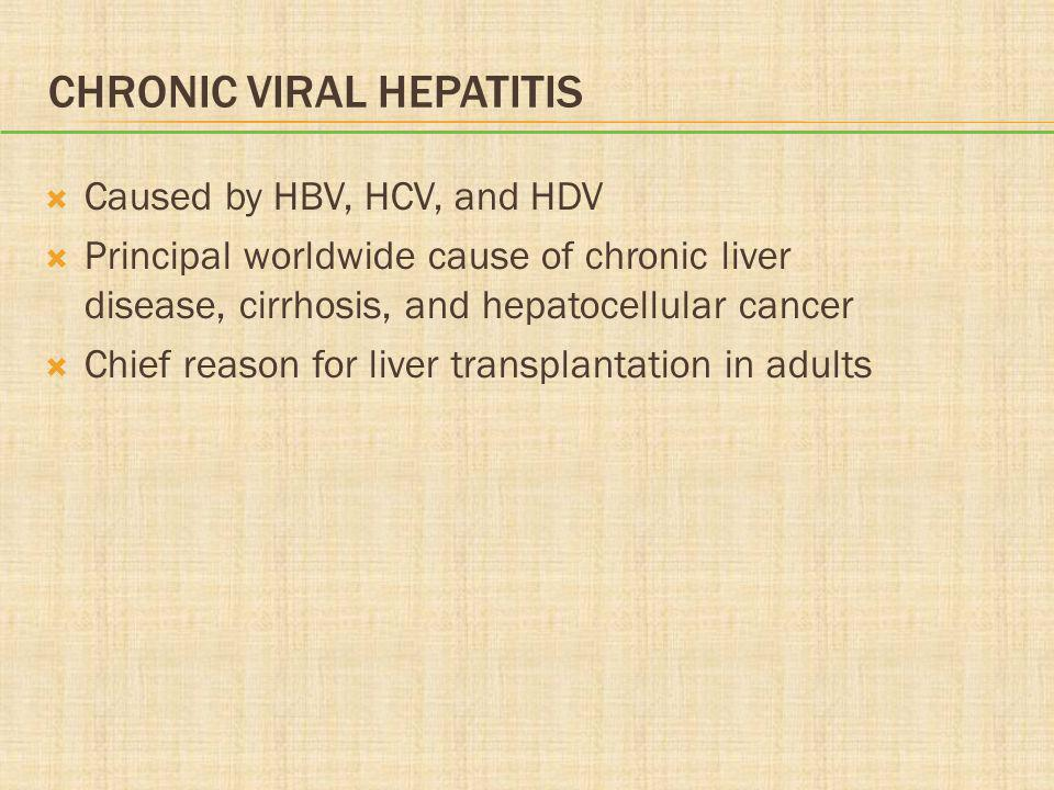 Chronic Viral Hepatitis