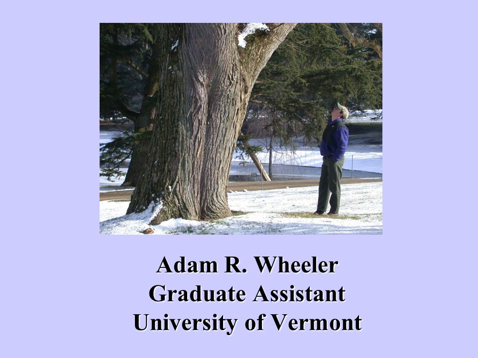 Adam R. Wheeler Graduate Assistant University of Vermont
