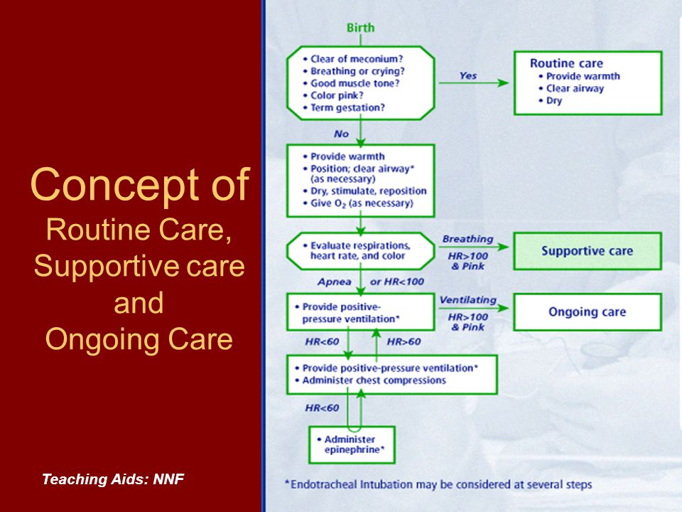 Concept of Routine Care, Supportive care and Ongoing Care