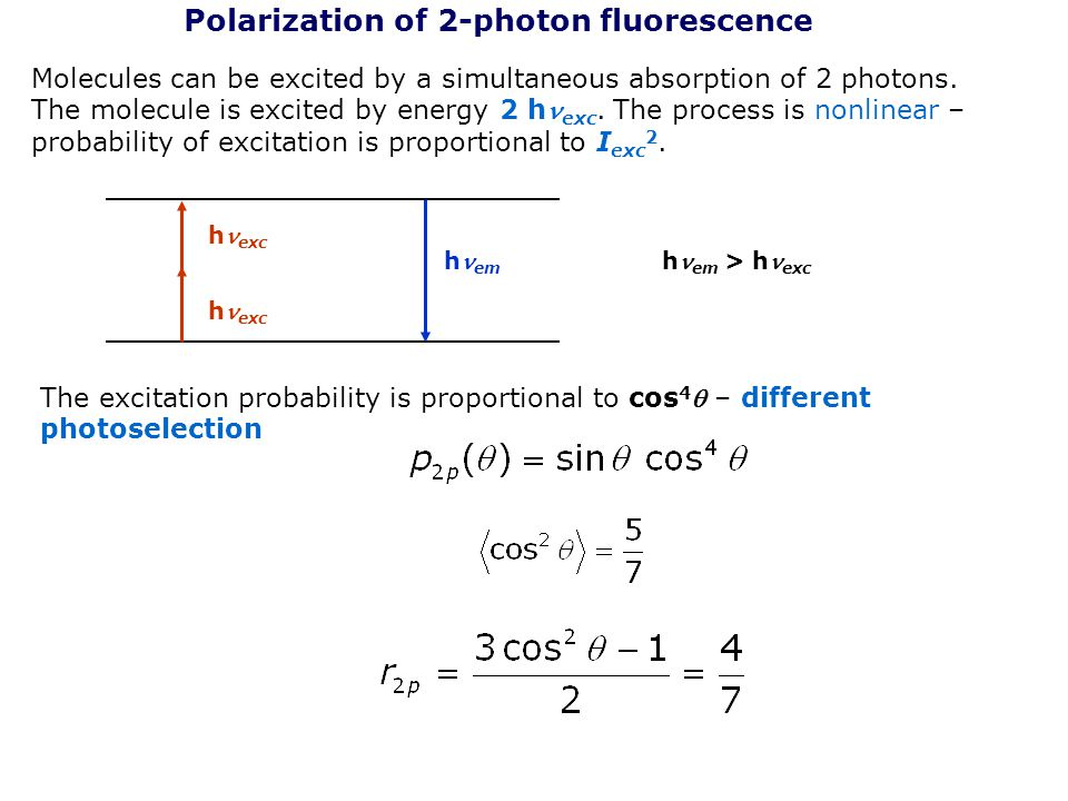 Polarization of 2-photon fluorescence