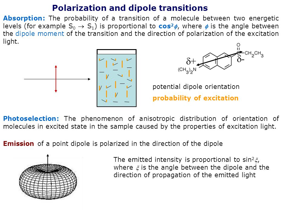 - + Polarization and dipole transitions