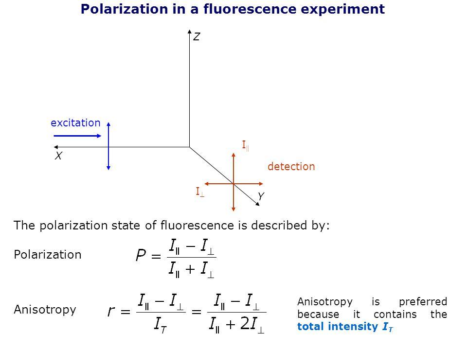 Polarization in a fluorescence experiment