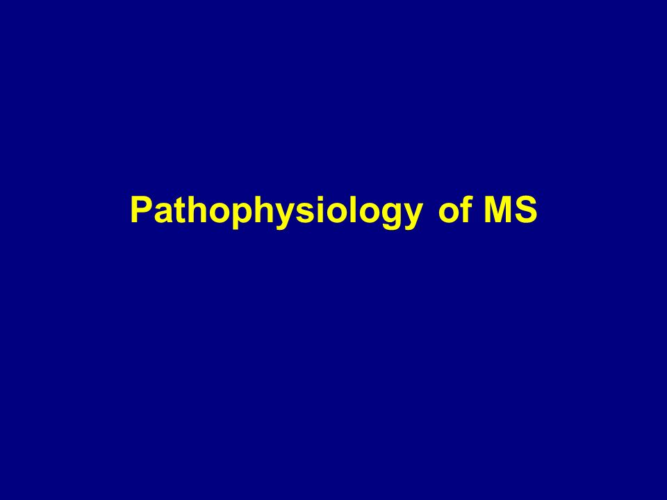 Pathophysiology of MS 18