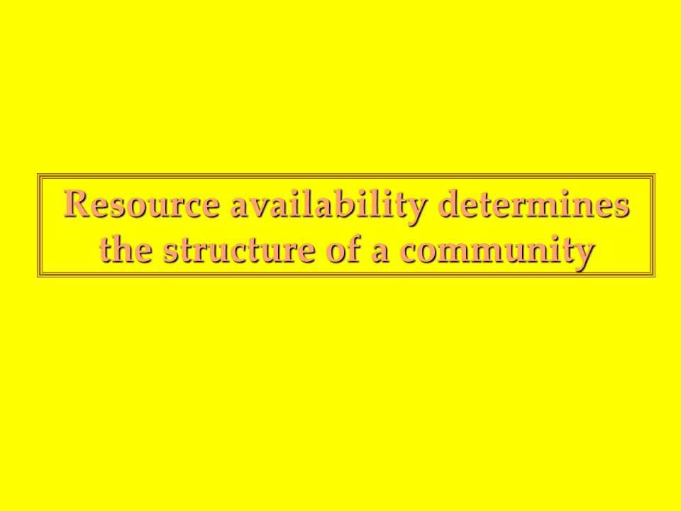 Resource availability determines the structure of a community