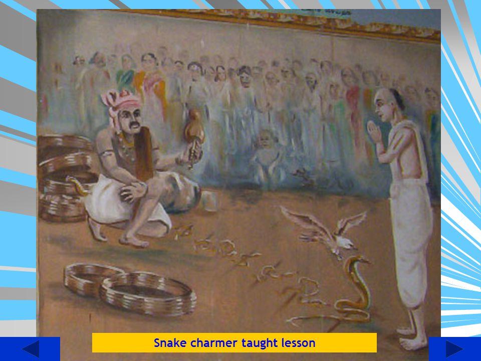 Snake charmer taught lesson