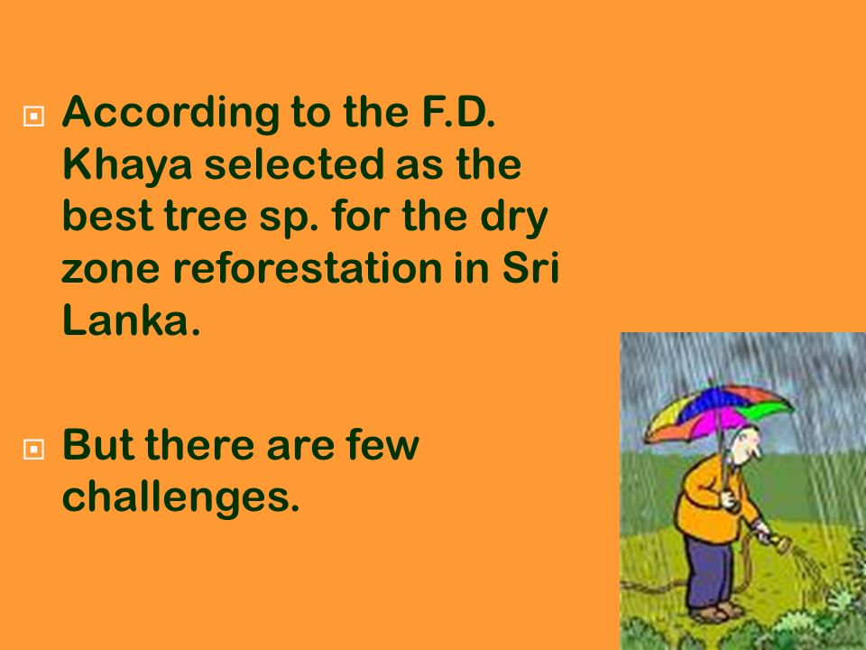 According to the F. D. Khaya selected as the best tree sp