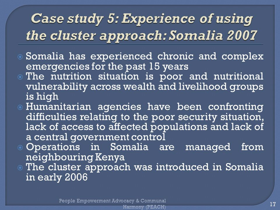 Case study 5: Experience of using the cluster approach: Somalia 2007