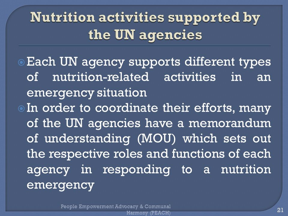 Nutrition activities supported by the UN agencies