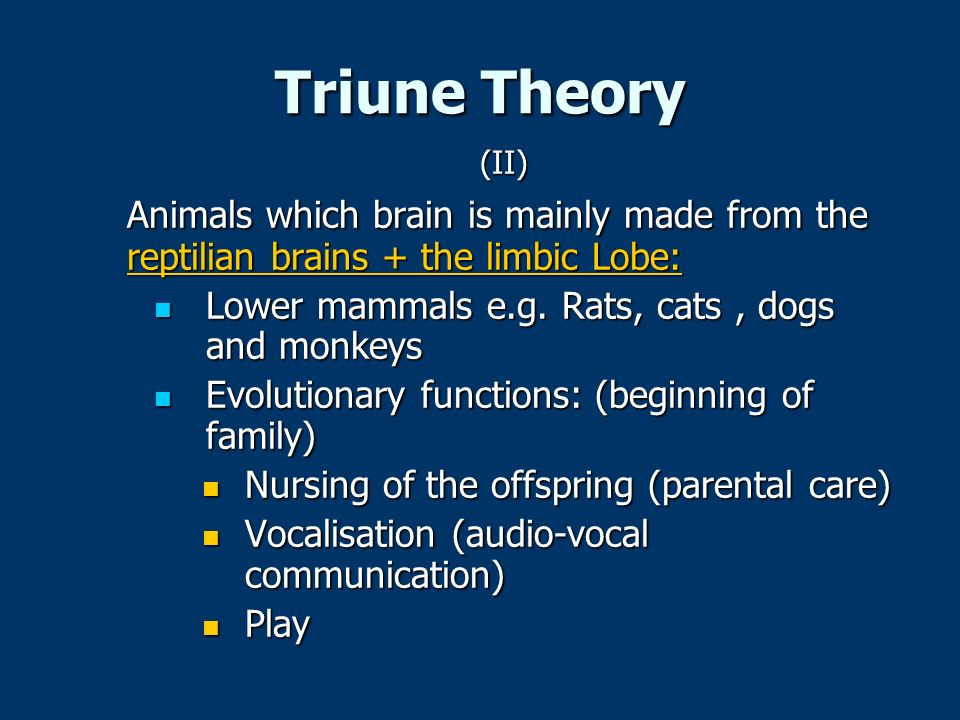 Triune Theory (II) Animals which brain is mainly made from the reptilian brains + the limbic Lobe: