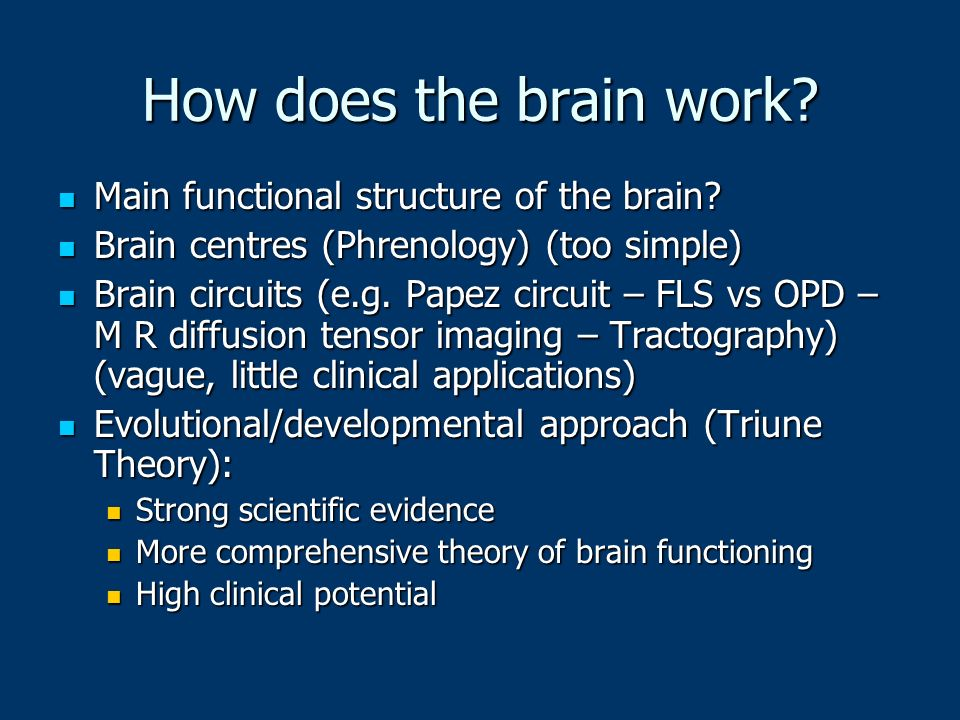 How does the brain work Main functional structure of the brain